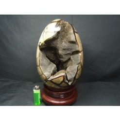 대형 셉타리안 계란형(암모나이트화석이들어있는)