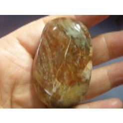 규화목(나무화석) 수정