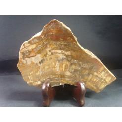 나무화석 수정 소품